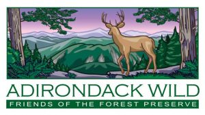 Adirondack Wild Logo